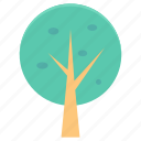 ecology, foliage, forest, shrub tree, tree icon