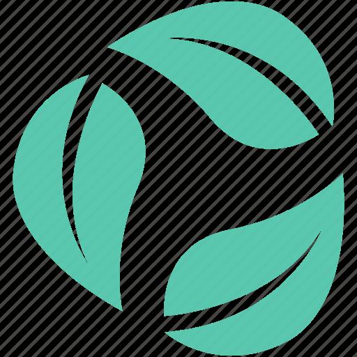 ecology, foliage, greenery, leaves, tree leaf icon