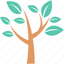 forest, plant, tree, tree branch, twig icon