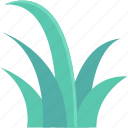 ecology, grass, grass shrub, greenery, nature icon