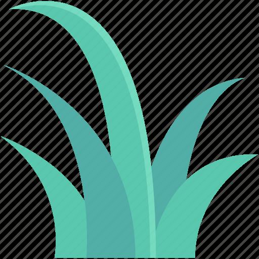 ecology, grass, grass shrub, greenery, nature icon