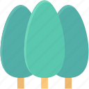 cypress tree, evergreen, park, pine tree, trees icon
