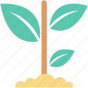 gardening, plant, plant growing, planting, sapling icon