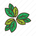 leaves, thicket icon