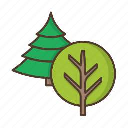 coniferous, deciduous, forest, nature, plant, tree, trees icon