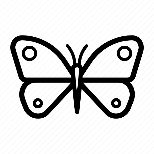beauty, butterfly, moth, nature, outdoors, spring, wings icon