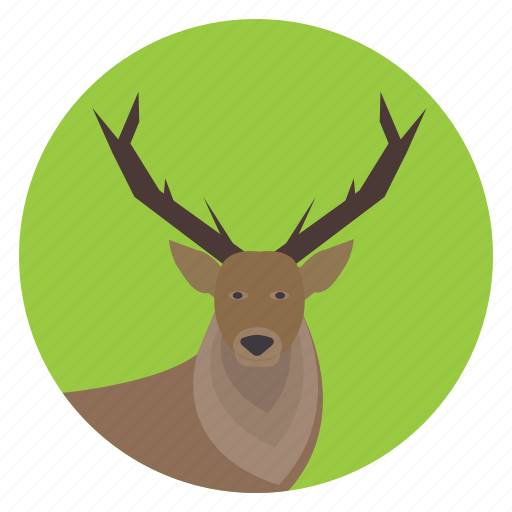 animal, deer, forest, hart, nature, stag, wildlife icon