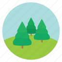 fir, forest, nature, pine, tree, trees, woods icon