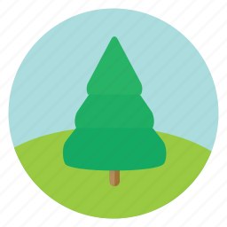 fir, forest, nature, pine, spruce, tree, woods icon