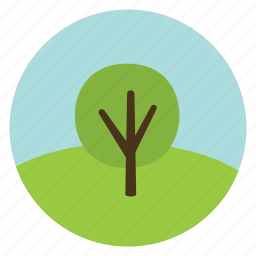 broad-leaved, forest, leaves, nature, tree, woods icon