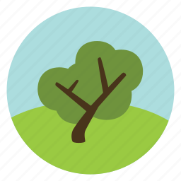 forest, leaves, nature, oak, olive, tree, woods icon