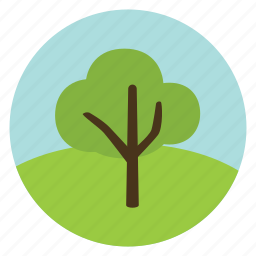 forest, green, leaves, nature, olive, tree, woods icon
