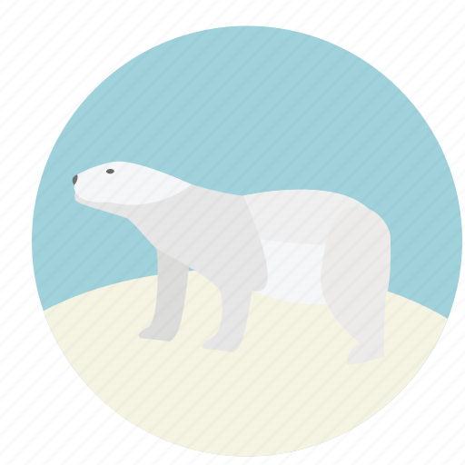 animal, bear, nature, polar, polar bear, white, wildlife icon