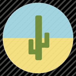 cactus, desert, green, nature, plant icon