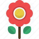 flower, love, nature, plant, romantic, valentine icon