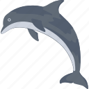 animal, dolphin, mammal, sea, whale icon