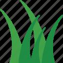 turf, lawn, grass, yard, meadow