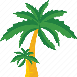 beach, nature, palm, summer, tree icon