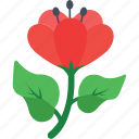flower, hibiscus, nature, rose mallow, spring icon