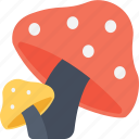 food, fungi, mushroom, nature, toadstool icon