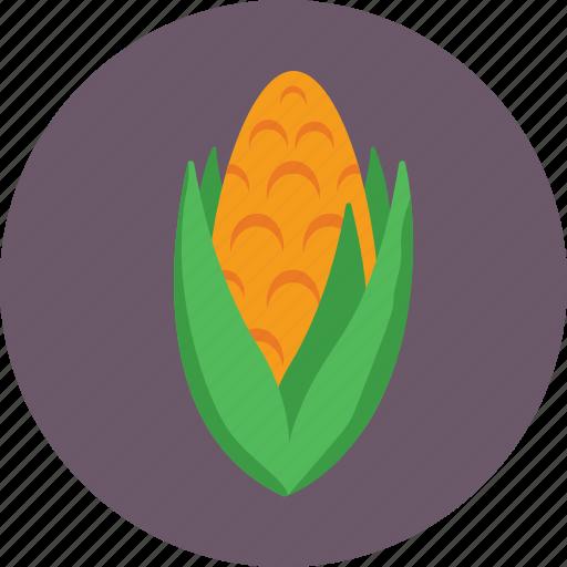cob, corn, maize, organic, sweet corn icon