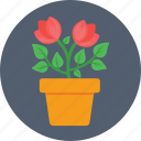 flowerpot, pot, ecology, gardening, nature icon