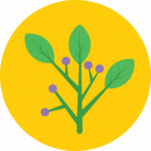 flower, hyacinth, leaves, nature, plant icon