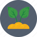 foliage, leaves, plant, sapling, seedling icon
