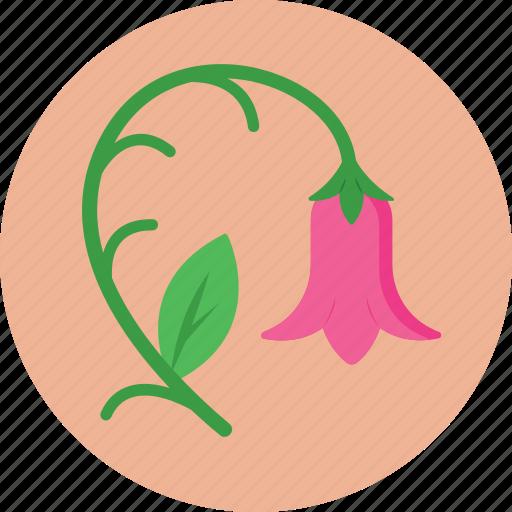 Bloom, blossom, flower, rose, tulip icon - Download on Iconfinder