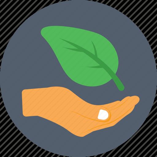 ecology, gardening, leaf, nature, plantation icon