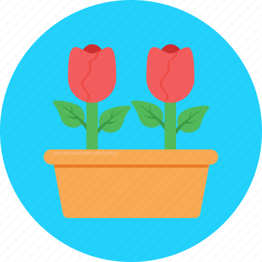 Blossom, flower, gardening, red rose, rose icon - Download on Iconfinder
