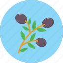 berry, blueberry, food, fruit, huckleberry icon