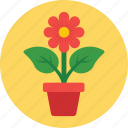 ecology, gardening, nature, plant, pot icon