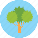 forest, garden, larches, nature, tree icon