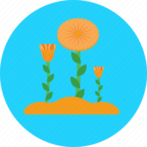 bloom, blossom, flower, nature, spring icon