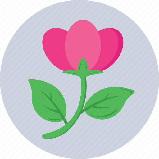 bloom, blossom, flower, rose, tulip icon