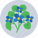bloom, flower, nature, pansy, spring icon