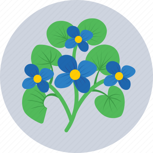 Bloom, flower, nature, pansy, spring icon - Download on Iconfinder