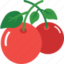 cherry, food, fruit, healthy, organic icon