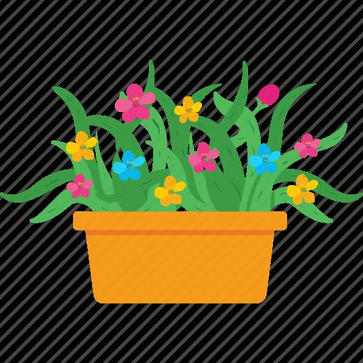flower, garden, plant, pot, yard icon