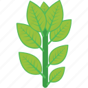 branch, ecology, leaves, plant, twig icon