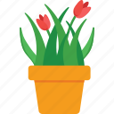 flower, garden, plant, pot, yard