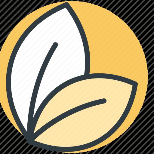 ecology symbol, green foliage, greenery, leafs, nature icon