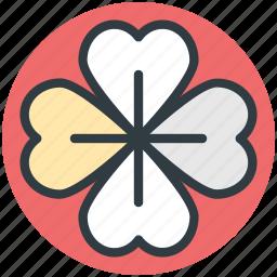 clover, four leaf clover, nature, plant, shamrock icon