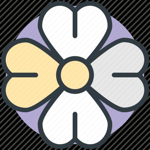 Clover, four leaf clover, nature, plant, shamrock icon - Download on Iconfinder