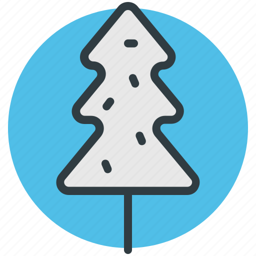 christmas tree, evergreen tree, fir tree, pine tree, tree icon