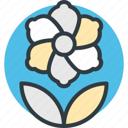 decoration, flower beauty, nature inspiration, swirl shape flower icon