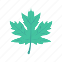 ecology, green, leaf, leave, nature icon