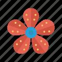 bloom, flower, garden, nature, park