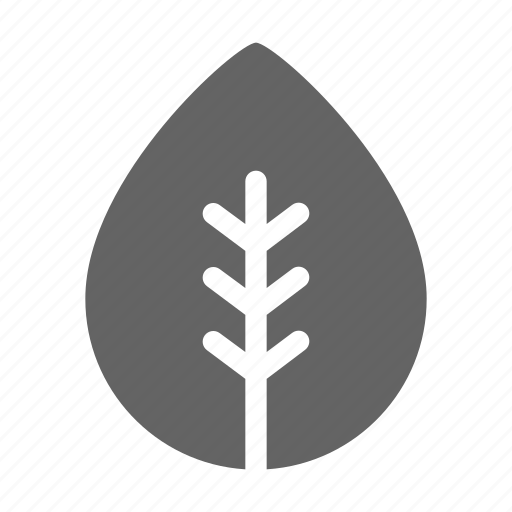 green, leaf, nature icon
